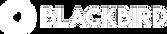 logo-blackbird-header.png