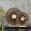 Thumbnail: Lampe à poser Kalimantan Naturel et noir