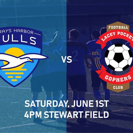 Gulls vs Lacey Preview