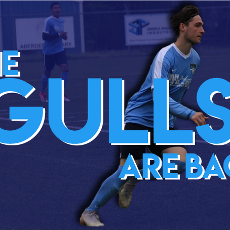 The Gulls Are Back For 2021