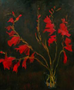 Red Gladioli III
