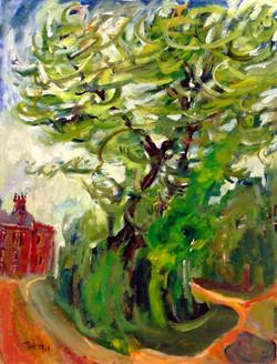 Tree of Ashbrooke