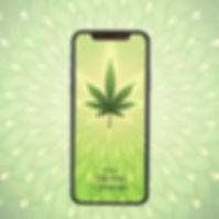 product-square-digital-cannabis.jpg