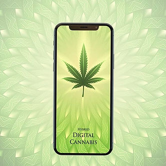 product-square-digital-cannabis.jpg