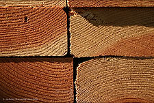 Jason Savage Images Puzzle 23 - Wood.jpg