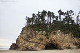 Group 1, Puzzle 19 - Oregon Coast