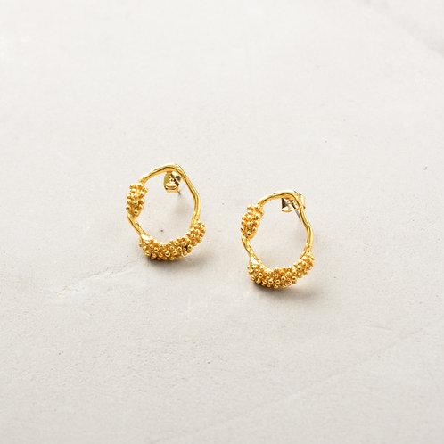 Seeds on Oval Earrings