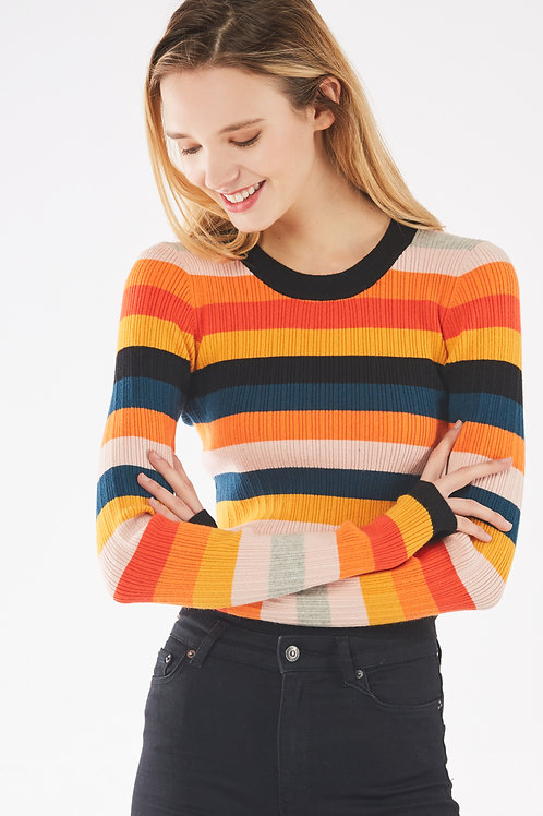 Mix Color Stripe Knit