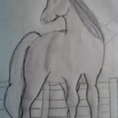 Drawing II-Bailey Kimbrell