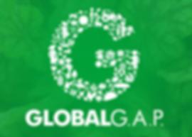 Global-GAP-700x500.png