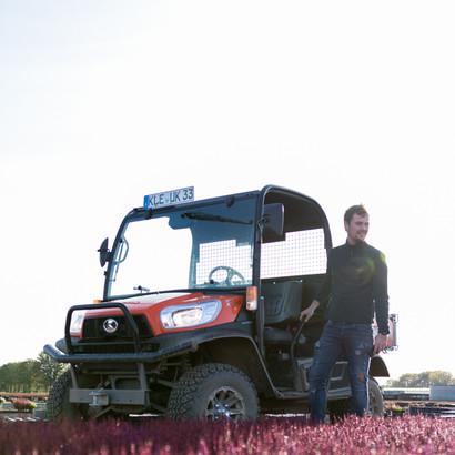 Jan Keysers bei der Bestandskontrolle unserer Calluna vulgaris mit dem neuen Kubota Betriebsfahrzeug