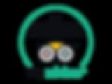2018_COE_Logos_white-bkg_translations_pt