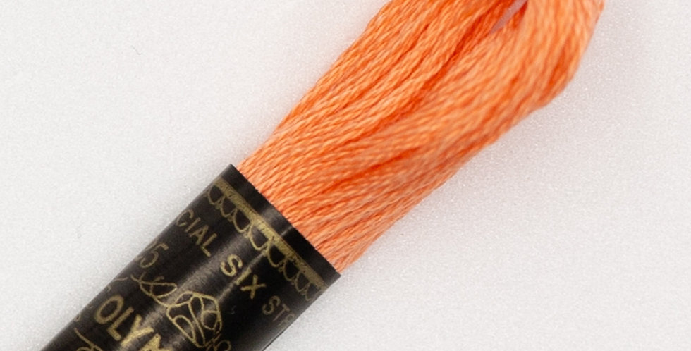 Embroidery Thread #170 - 6 Skeins