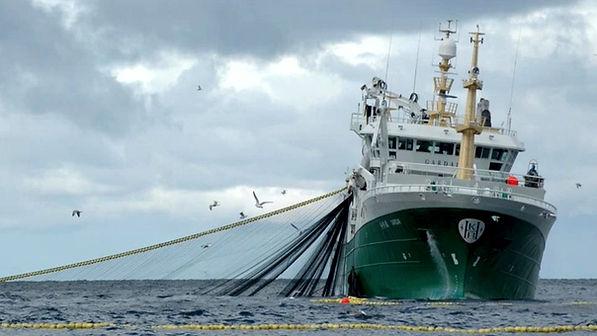 b actividad pesquera- APLICACIONES.jpg