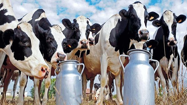 c industria láctea- APLICACIONES.jpg