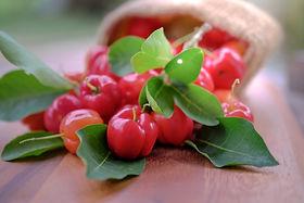 Acerola fruit close up on background.jpg