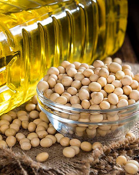 Soybean-Oil-1.jpg