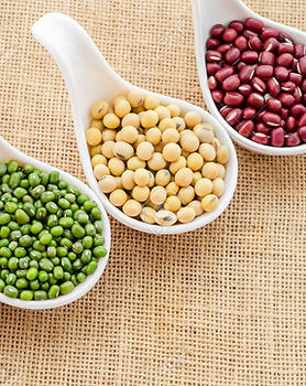 56288685-mix-of-seeds-beans-green-bean-a
