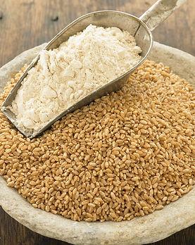 Methow-Hard-Red-Wheat-Flour.jpg