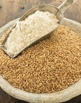 Methow-Hard-Red-Wheat-Flour.jpg