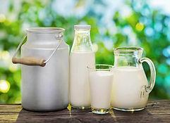 4smilk-other-milk.jpg