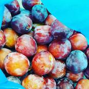 Hackney plums