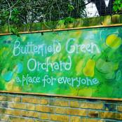 Butterfield Green Orchard