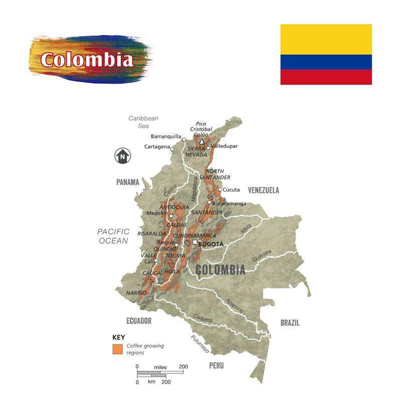 Origin-Colombia.jpg