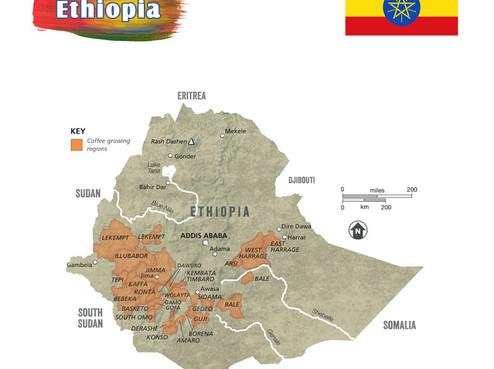 Origin-Ethiopia.jpg