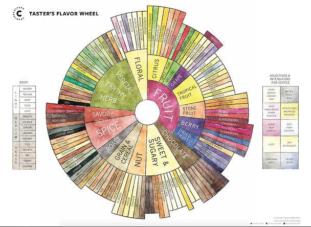 flavor_wheel.jpg