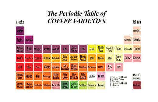 coffee-varieties.jpg
