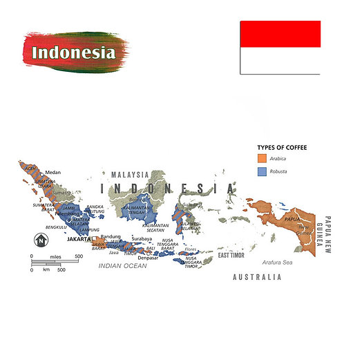 Green Indonesia Coffee Beans 900g