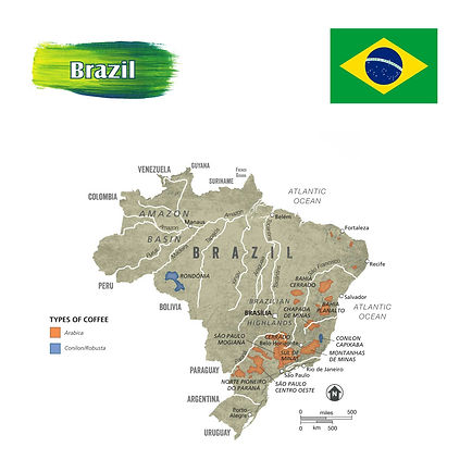 Origin-Brazil.jpg