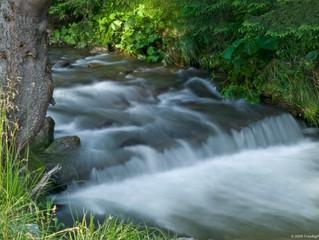 Peace like a river, not a pond!