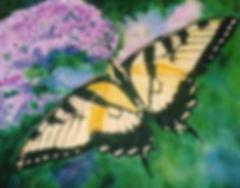 swallowtailonbuddleia.jpg