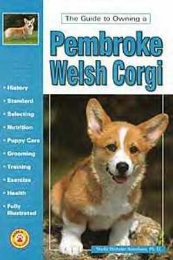 Pembroke Welsh Corgi - Boneham