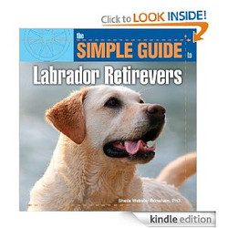 Simple Guide to Labs for Kindle