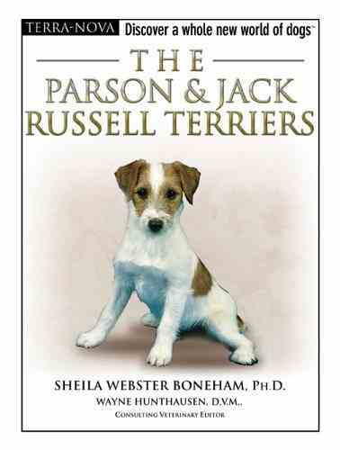 Parson & Jack Russell - Boneham