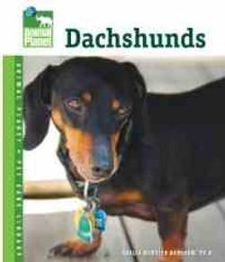 Dachshunds - Boneham