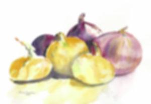 onions500.jpg