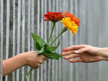 ¡Da y aprende a recibir con el corazón abierto!