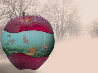 La fruta… ¡Descubre sus propiedades mágicas!