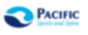 PSS Logo final2-01.png