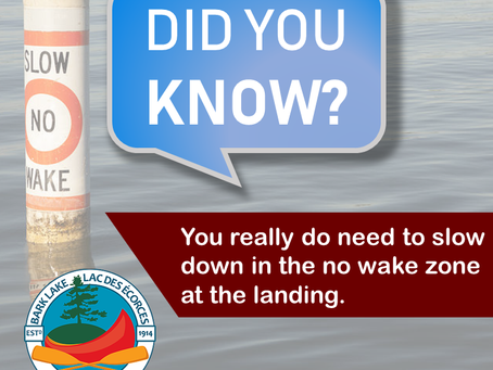 Did you know… you really do need to slow down in the no-wake zone at the landing.