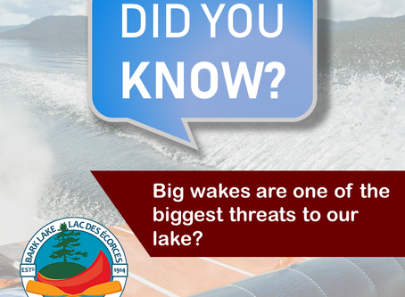Did you know…. Big wakes are one of the biggest threats to our lake?