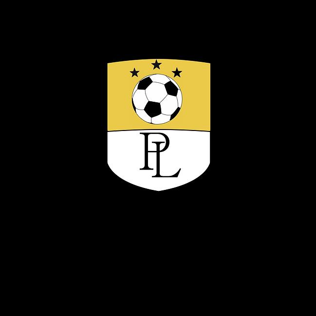 PLHS Soccer Logo.png
