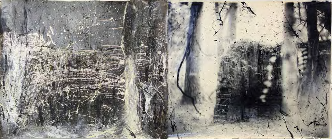 Sally and Jesse Mann with Liz Liguori and The Mountain Lake Workshop, Metempsychosis Diptych #2, 2011