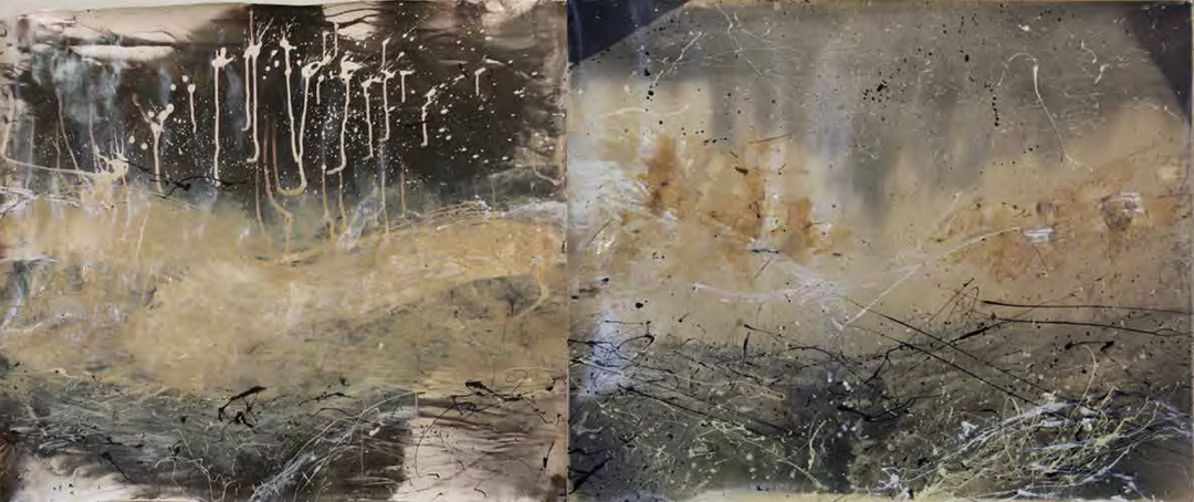 Sally and Jesse Mann with Liz Liguori and The Mountain Lake Workshop, Metempsychosis Diptych #4, 2011