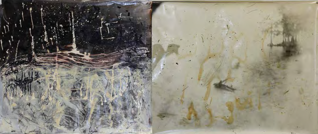 Sally and Jesse Mann with Liz Liguori and The Mountain Lake Workshop, Metempsychosis Diptych #3, 2011