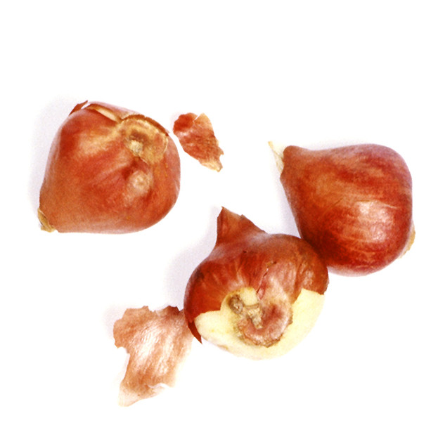 """According to DrHwnc.com craving onions could mean your body wants """"dietary fiber,Vitamin B6, Folate, Potassium, Manganese or Vitamin C"""" Be sure to eat your onions when you crave them."""